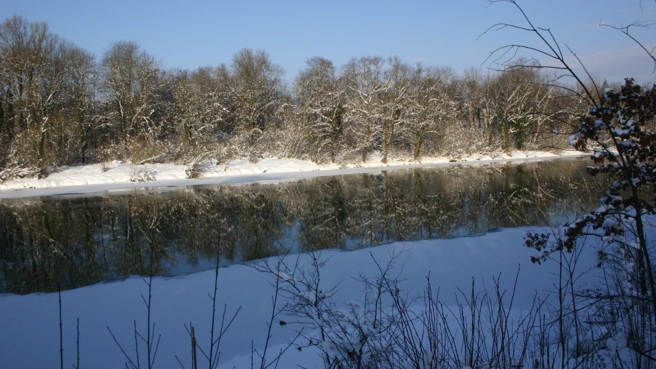 Au Schnee 4.jpg