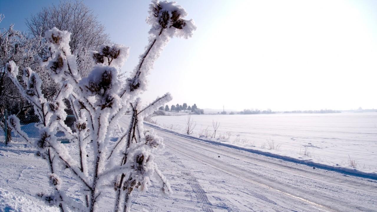 Leitenweg 2 Schnee.jpg