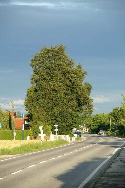 Wiener Straße 3.jpg