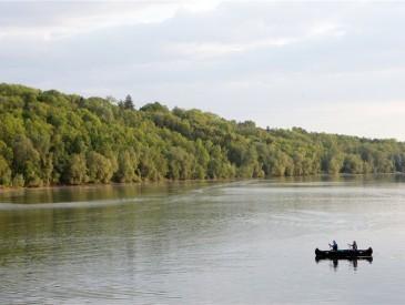 Die Donau in unserem Bezirk
