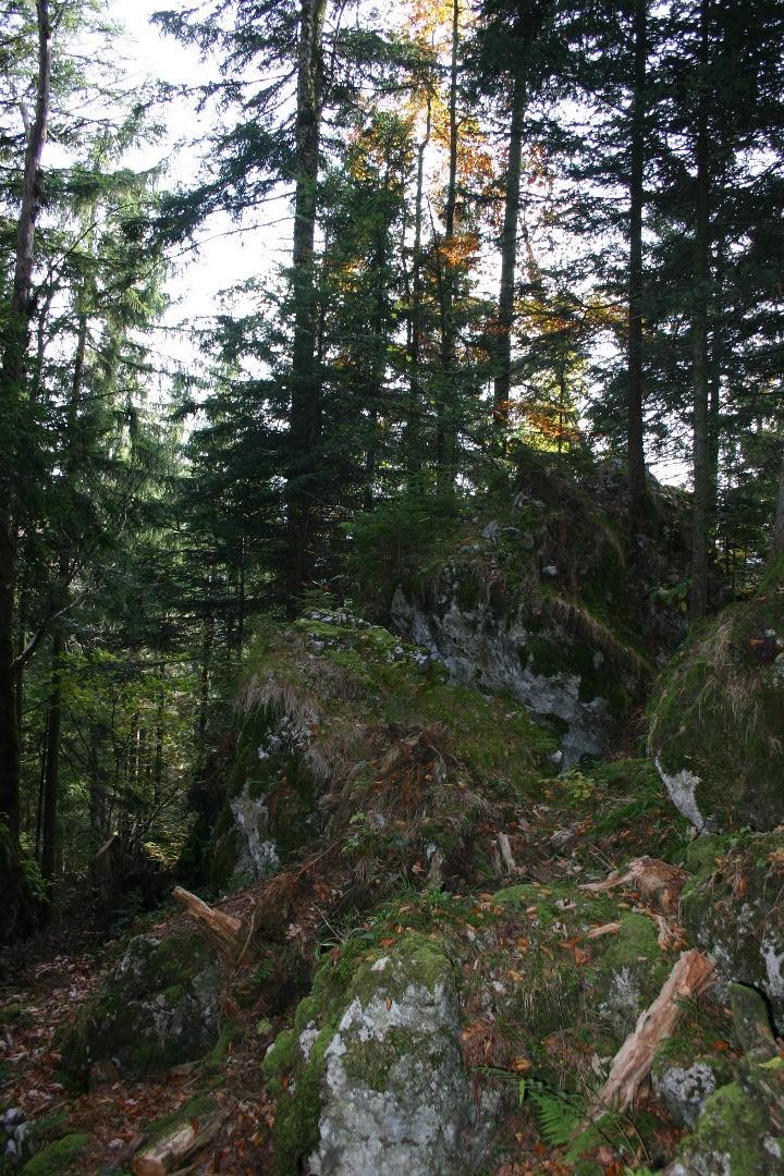 Schluchtenhütte Januar 2017 239.JPG