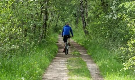 Radfahren/Mountainbiken