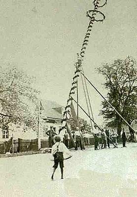 Maibaum 1946.jpg