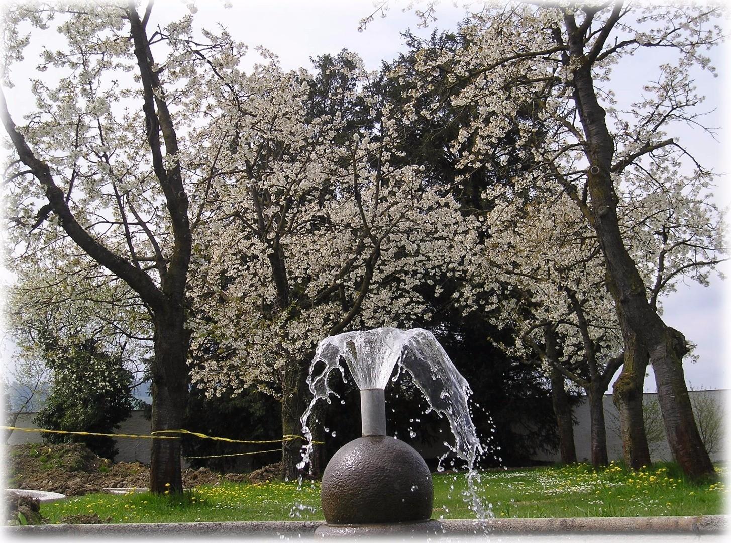 hofgartenbrunnen.jpg