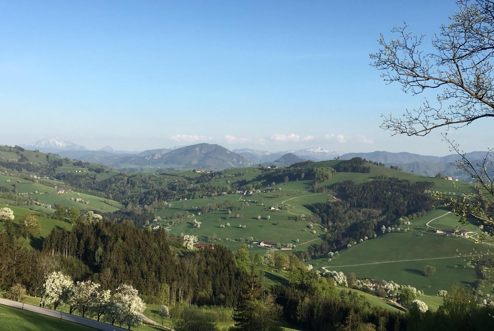 Panoramahöhenweg Burgmatt Blick ins Gebirge.jpg