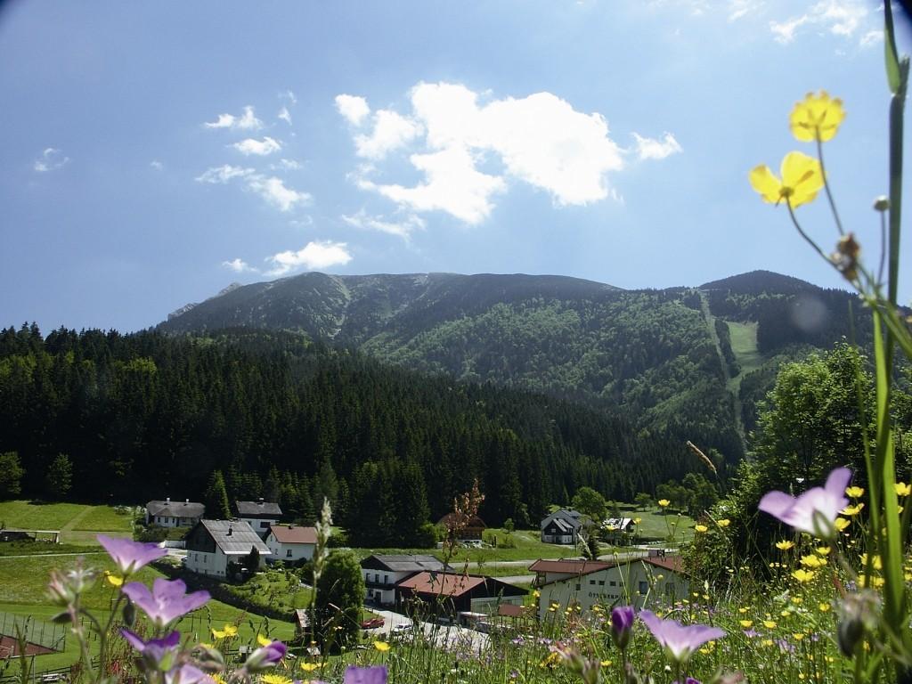 Oetscher Sommer.jpg