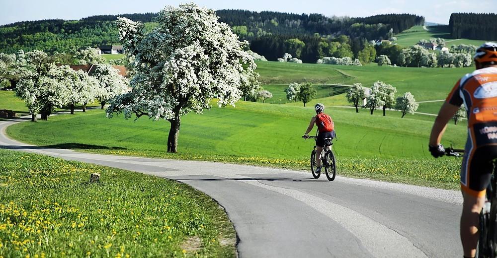 Radweg1.jpg