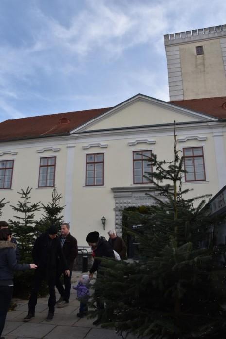Flammende Schlossweihnacht.JPG