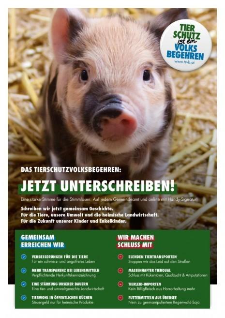 Plakat_Allgemein.jpg