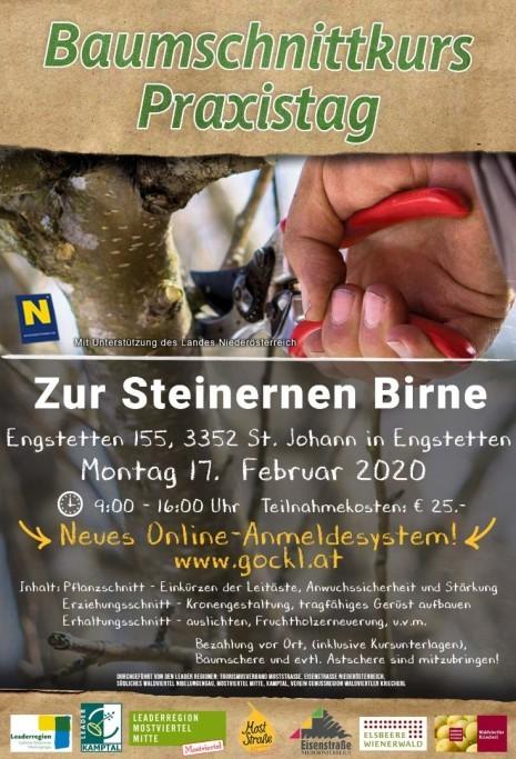 Praxistag_St.Johann Engstetten.jpg
