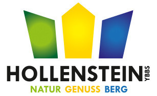Logo_HollensteinY-NGB-mini_rgb.jpg