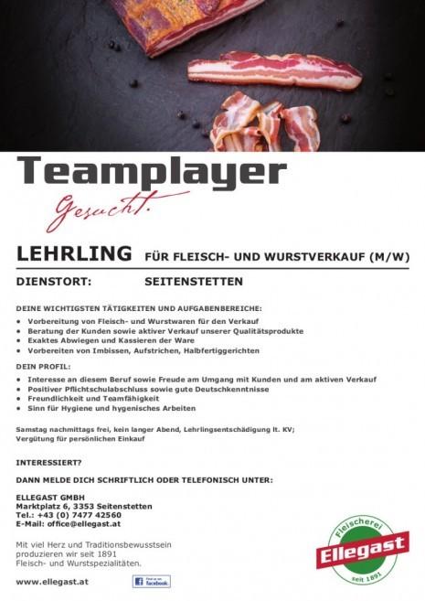 ELLEGAST_INSERAT_LEHRLING_Seitenstetten.jpg