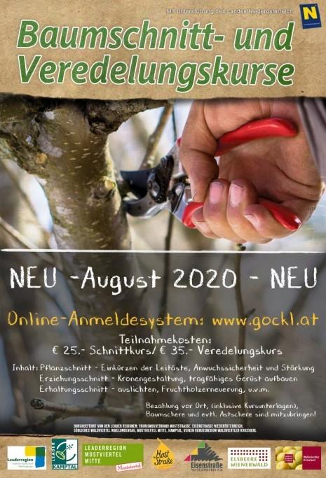Plakat Schnittkurse_Gemeinden 2020.jpg