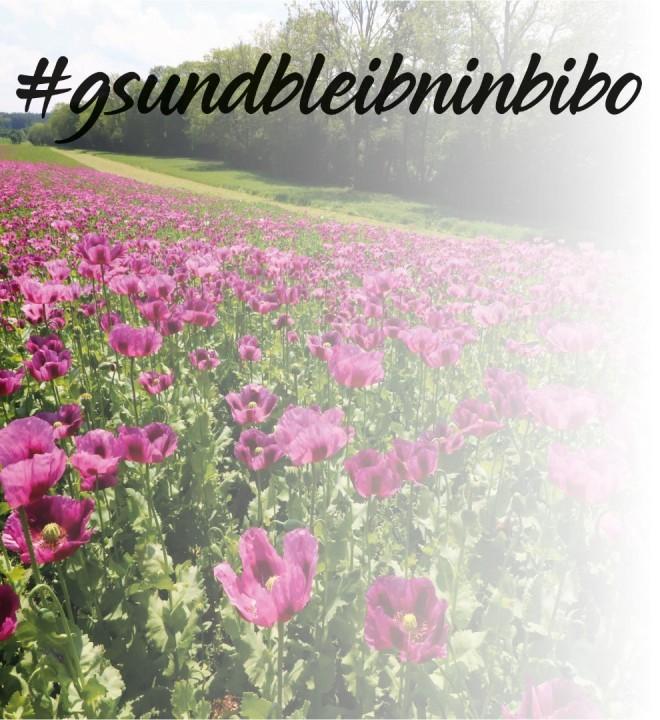#glundbleibninbibo.jpg