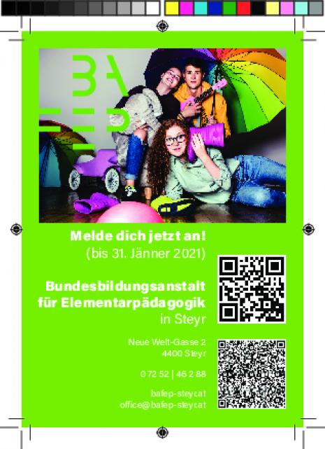 Inserat_BAfEP_Steyr_91x130_Anmeldung.pdf