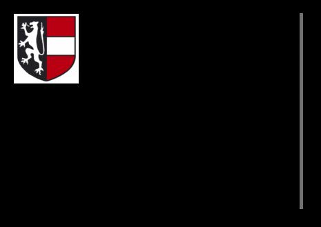 Voranschlag_2021.pdf