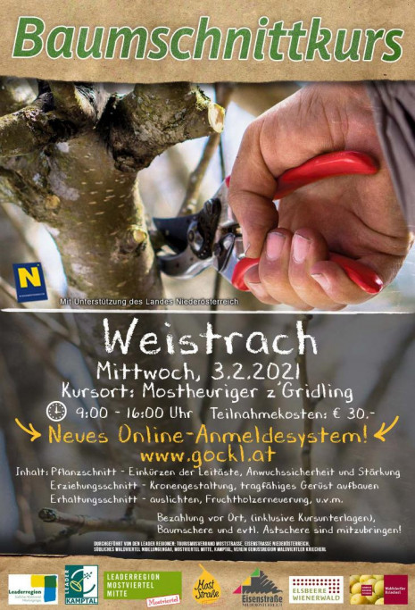 Vorlage_Weistrach.jpg