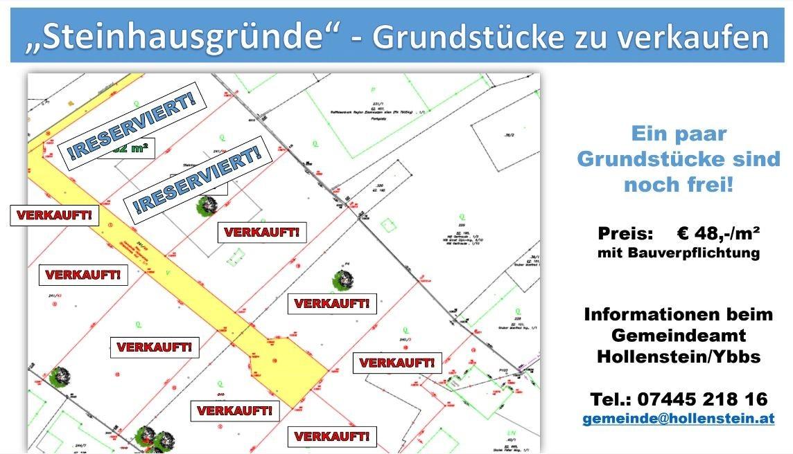 Steinhausgründe 20210112.JPG