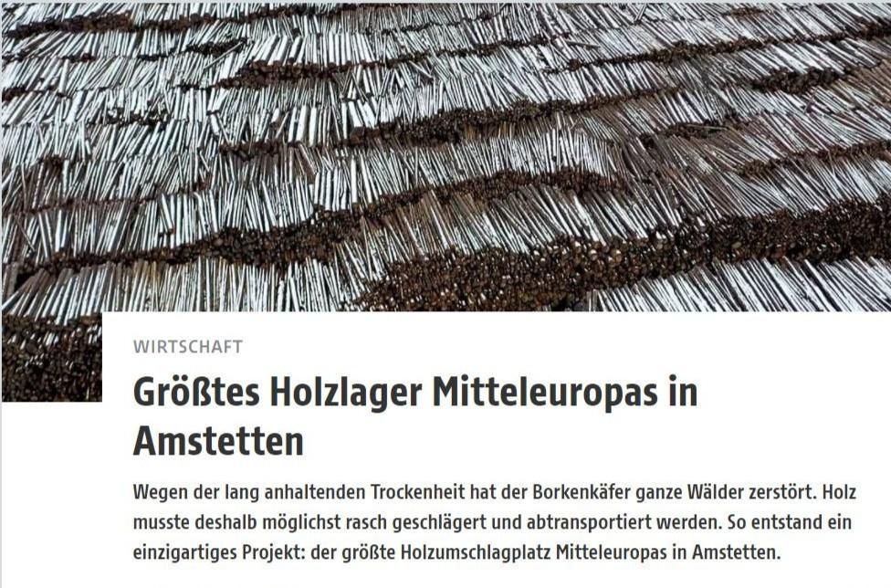 Größtes Holzlager Mitteleuropas in Amstetten.JPG