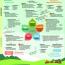 Infografik_Klima_ Hochformat.pdf