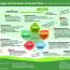 Infografik_Klima_Querformat.pdf