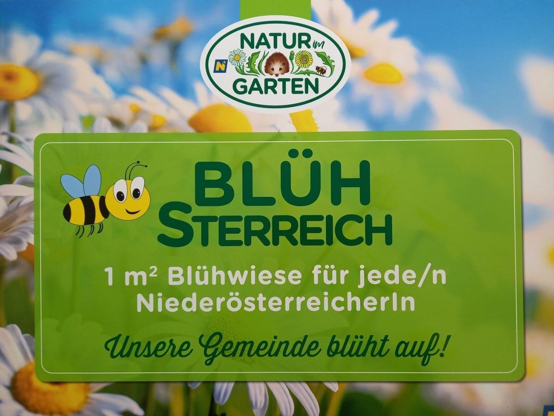 Blühsterreich-1.jpg