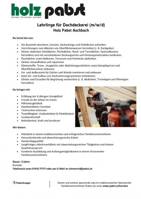 Lehrlinge für Dachdeckerei - Holz Pabst.jpg