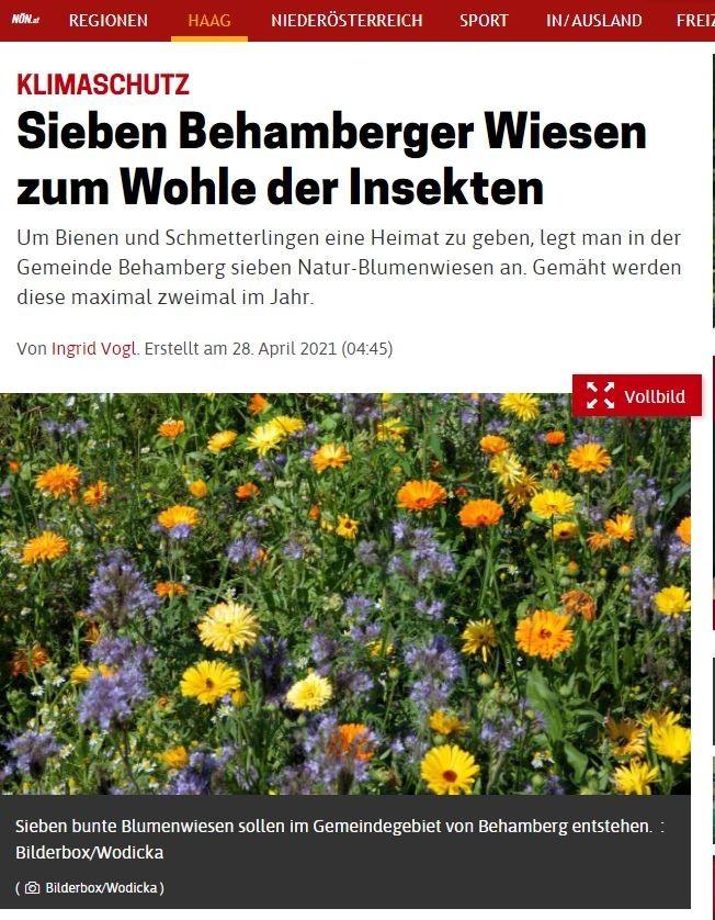 20210504_Sieben Behamberger Wiesen zum Wohle der Insekten.JPG
