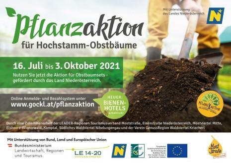 Pflanzaktion_2021_Moststrasse.jpg