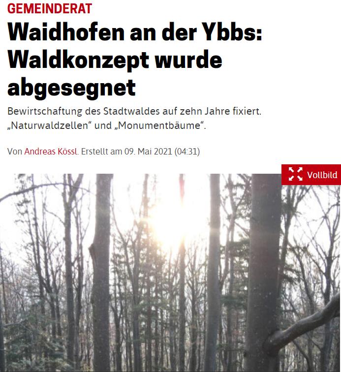 NOEN_KW19_Waldkonzept-WY.PNG