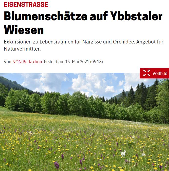NOEN_KW19_Blumenschätze_Ybbstaler.PNG