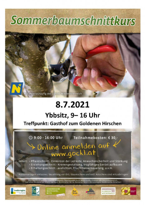 2021 Sommer Baumschnitt Ybbsitz.jpg