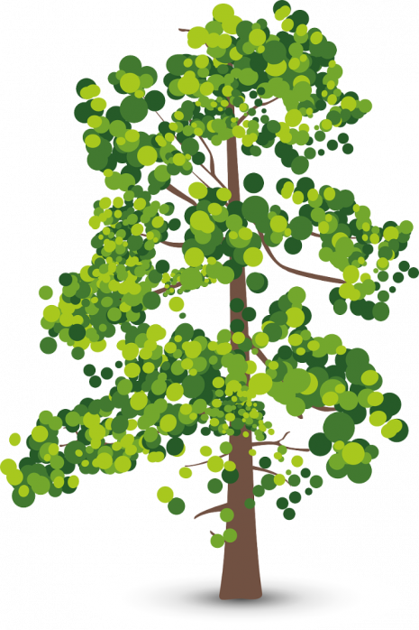 Baum--.png