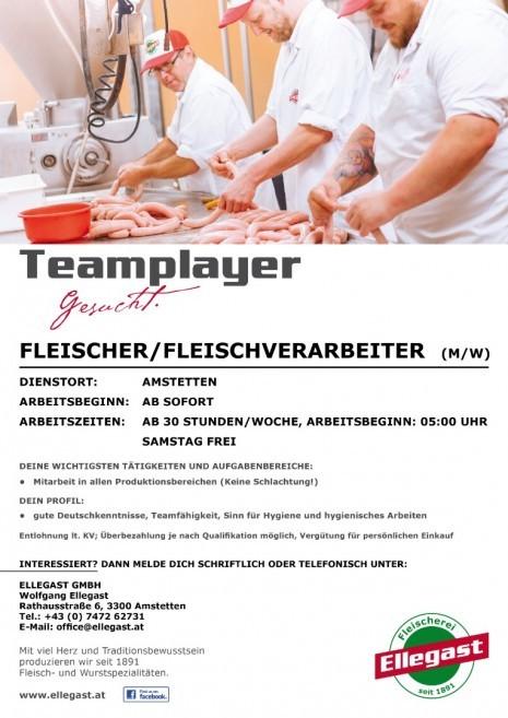 ELLEGAST_FLEISCHER.jpg