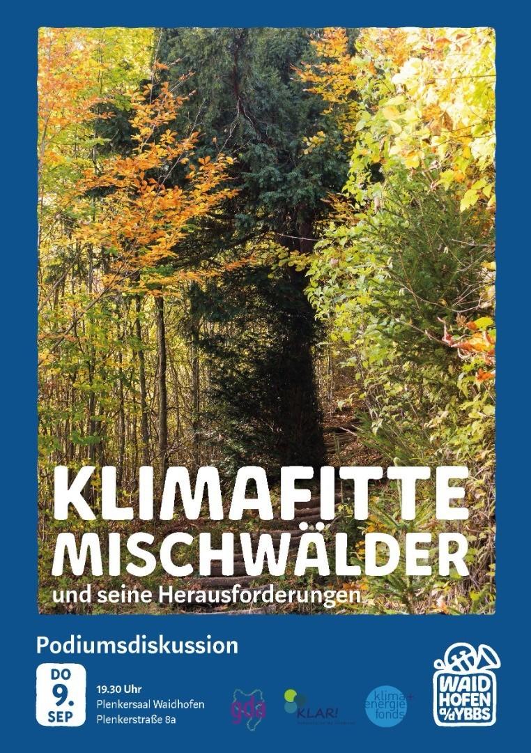 KlimafitteMischwälderKLAR.jpg