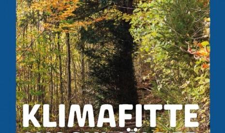 Klimafitte Mischwälder