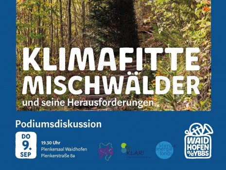 KlimafitteMischwälder_KLAR_4_3.jpg