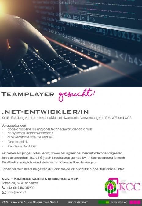 Jobinserat_Net Entwickler_1.jpg