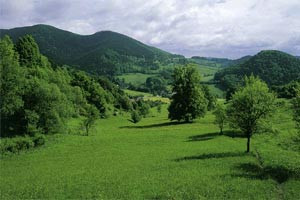 grestnerhochkogel2.jpg