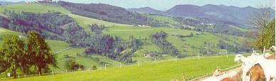 Foto-Panoramahoehenweg.jpg