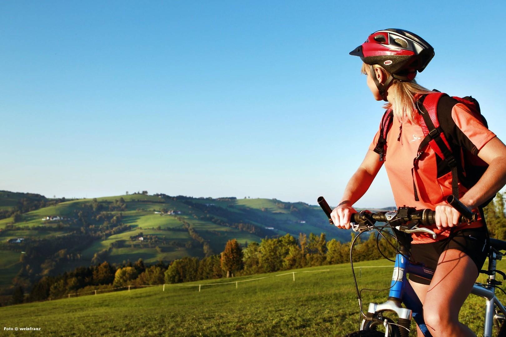Radeln am Panoramahöhenweg - weinfranz.jpeg
