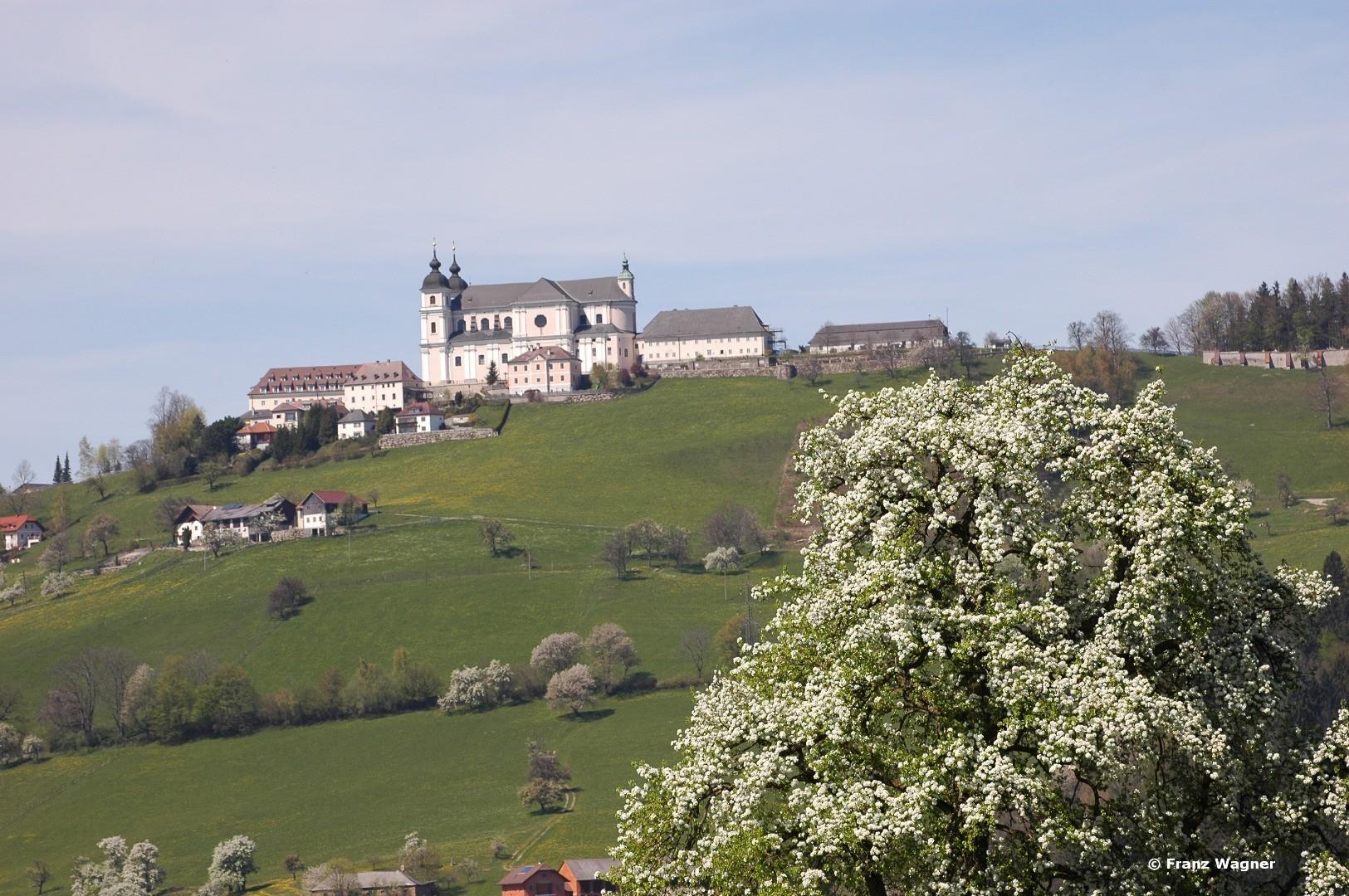 Frühling Sonntagberg (3) - Franz Wagner.JPG