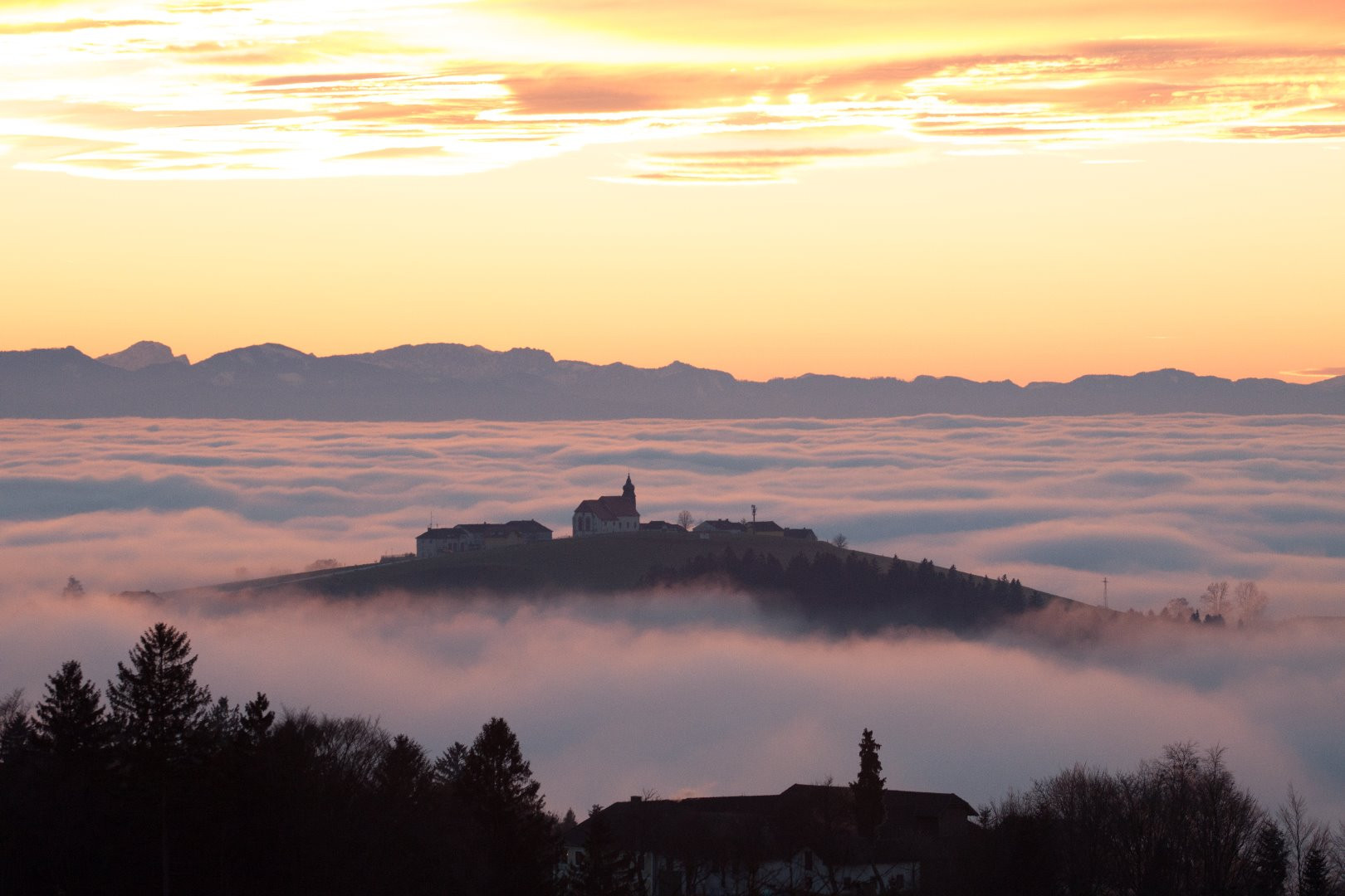 Kollmitzberg im Nebel_5_Thomas Steiner.jpg