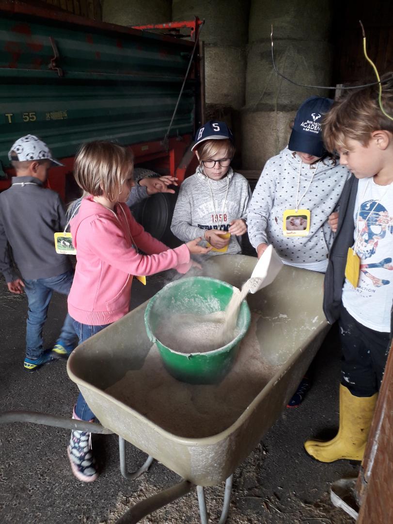 Willkommen in der Mittelschule - Aschbach-Markt