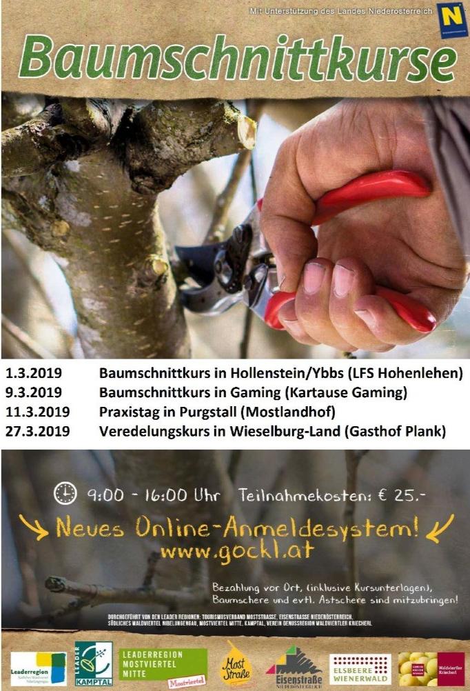 Bildungsangebote | Ernsthofen